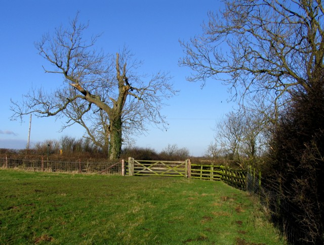 Gate onto Kibworth Road