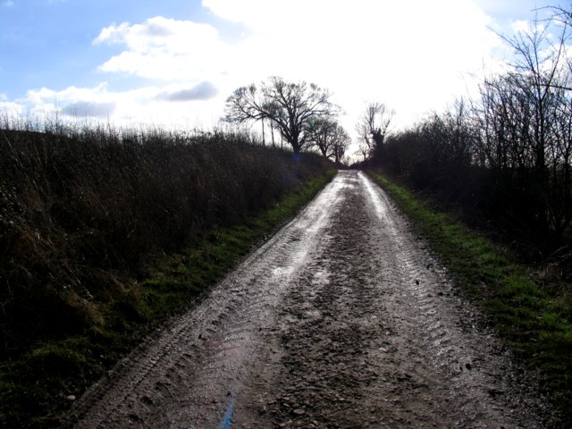 Track towards Thorpe Langton