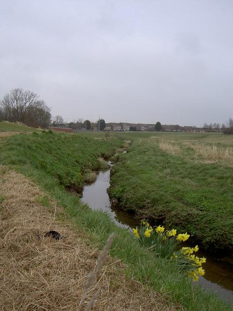 Arrowe Brook