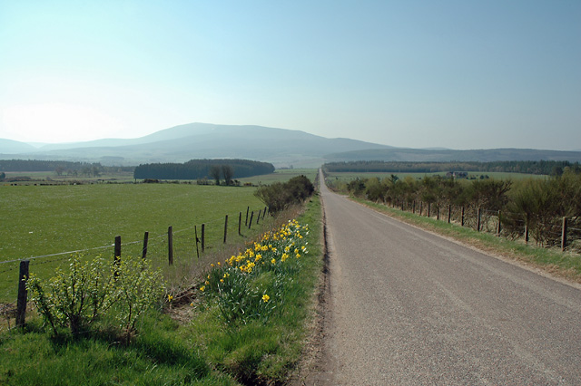 Road South of Archiestown