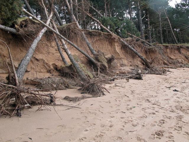 Erosion, Hedderwick Sands