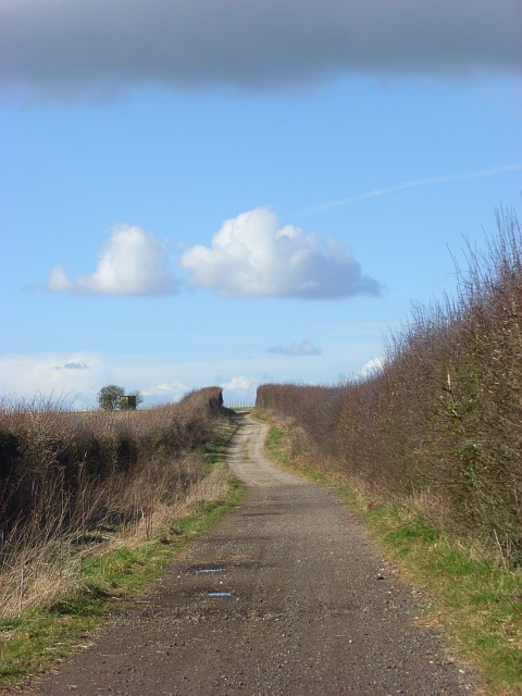 Byway on Row Down