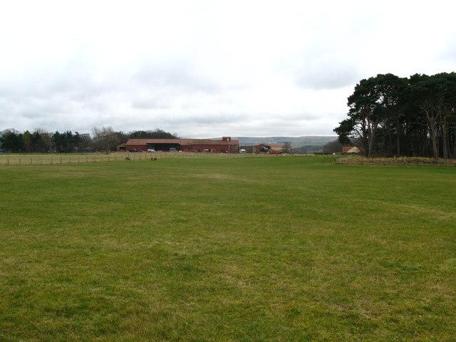 Hedderwick Hill Farm