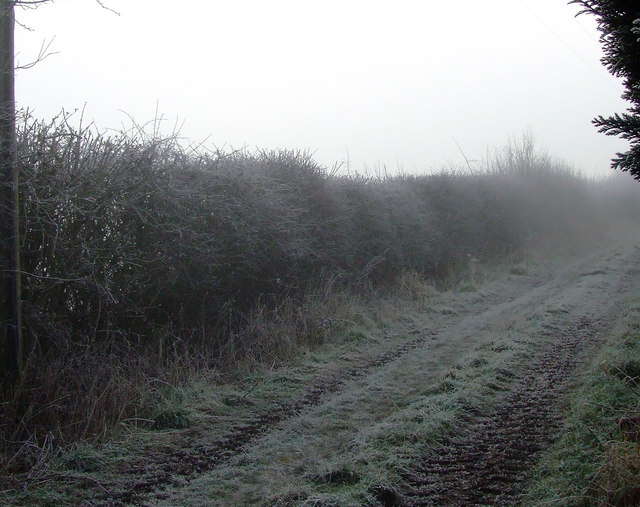Farmers Road behind Field Head Looking South