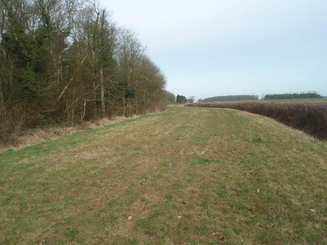 The Bullock Road