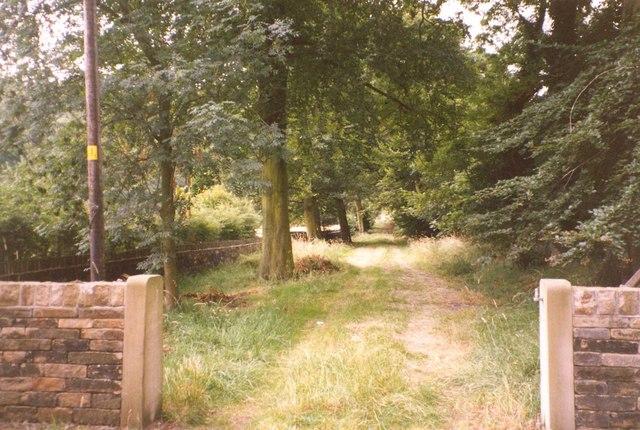 Track off Steanard Lane, Hopton