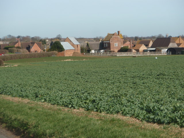 Across the field  to Manor House Farm