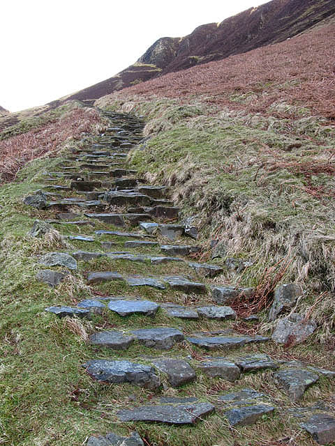 The stone path at the Grey Mare's Tail Nature Reserve
