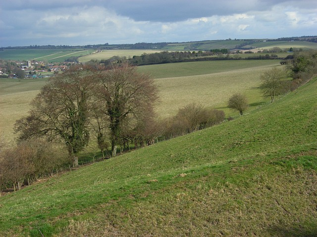 Coppington Down