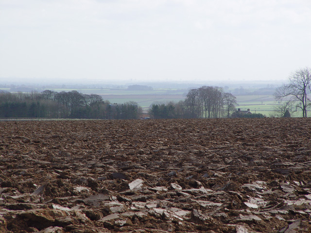 Ploughed Field above North Dalton, East Yorks.