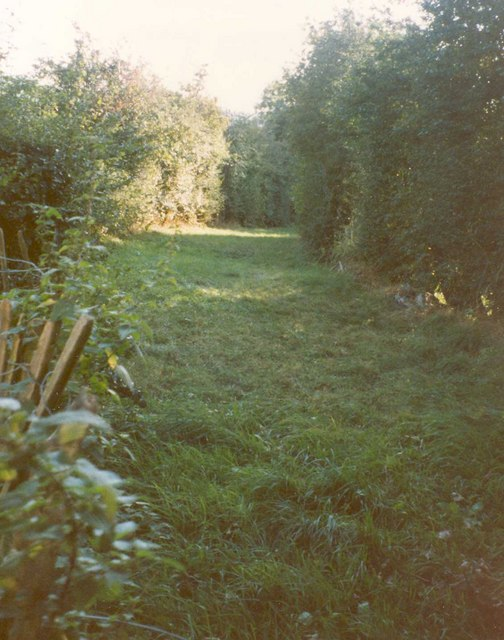 Old driveway off Huddersfield Road, Mirfield