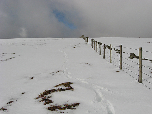 A fence leading up to Firthhope Rig