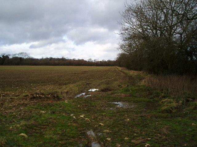 Footpath to Crossbush