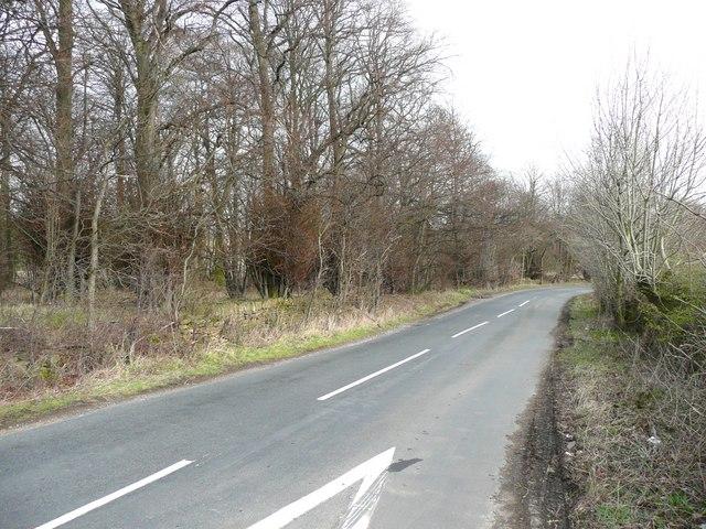 Litherop Lane, Emley