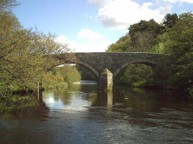 Rede bridge