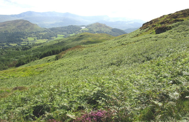 View across a bracken infested hillside towards Mynydd Ty isaf
