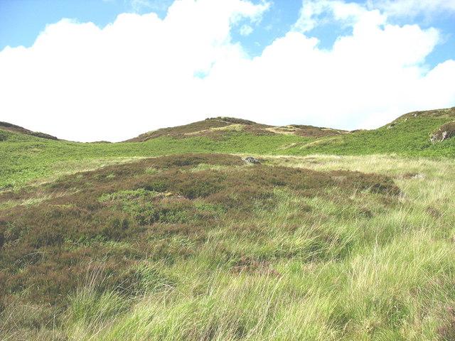 The southern hillside of Cerniau from Ffedogad y Gawres