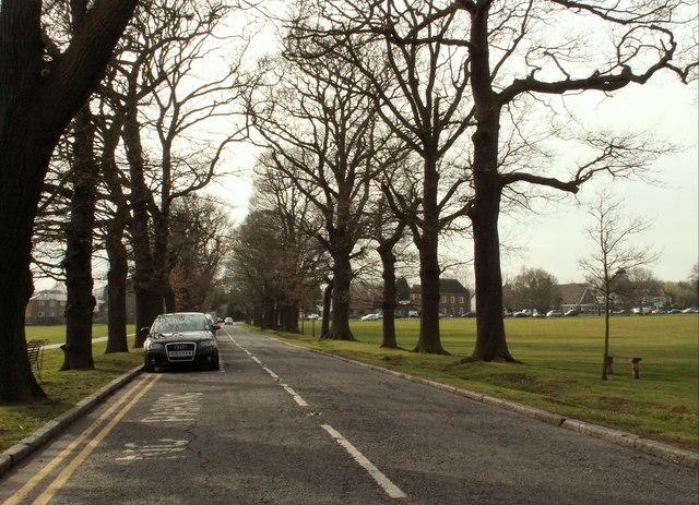 Loughton Lane