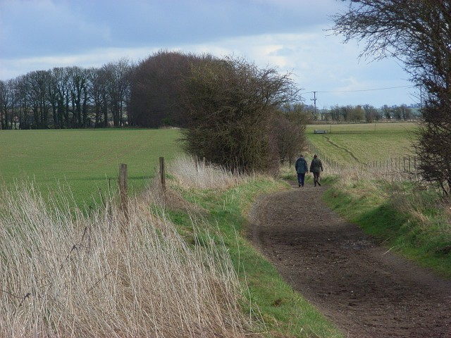 Byway above Lambourn