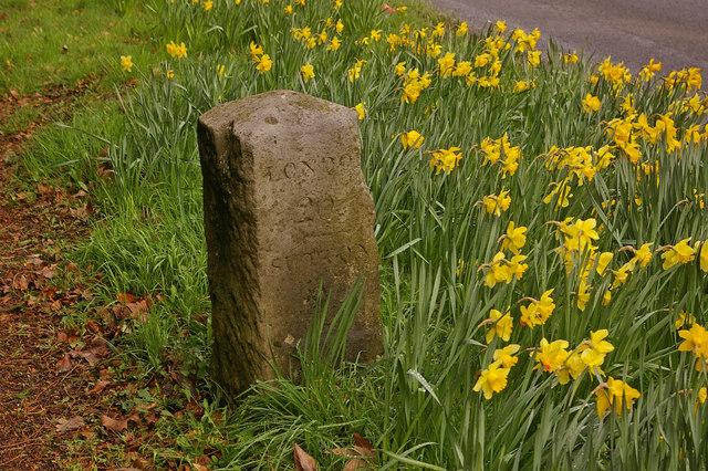 Milestone on Reigate Hill