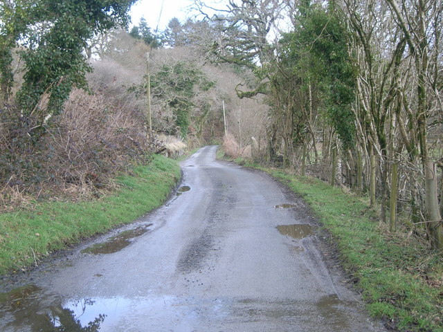 Looking up the lane at Cwm Pennant