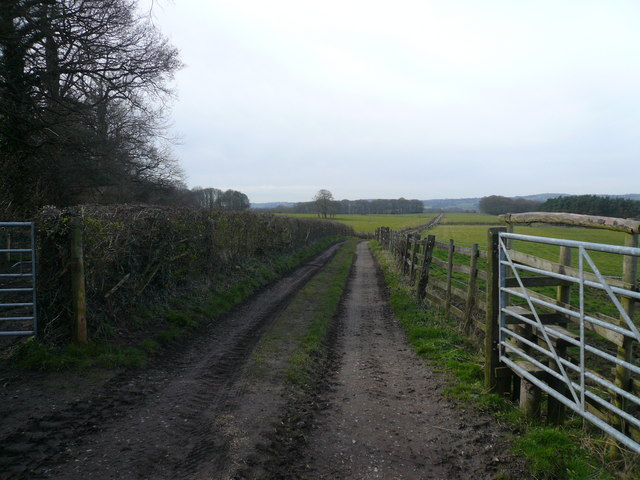 Alfreton - Footpath going in the direction of Oakerthorpe