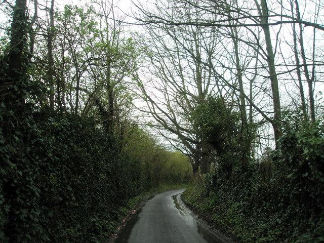 Bidbury Lane