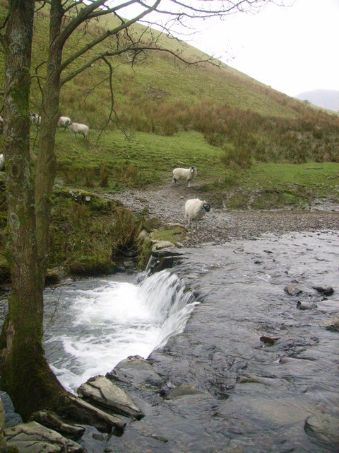 Ford, Backside Beck