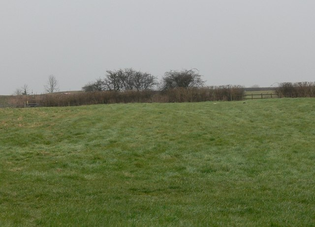 Fields north of Sutton in the Elms