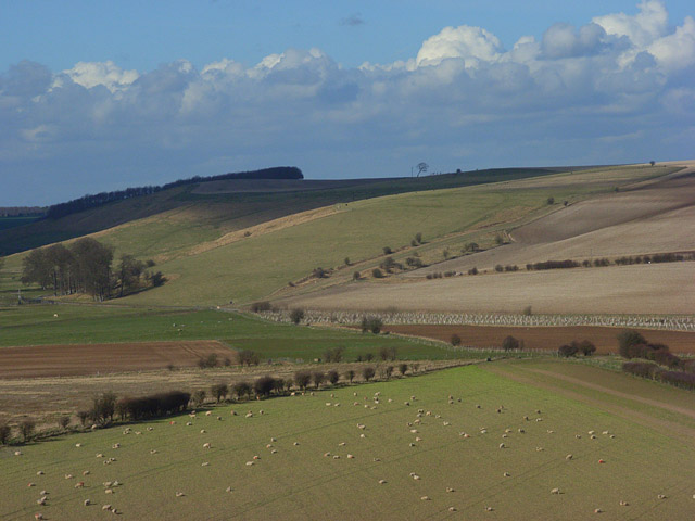 The Berkshire Downs between Lambourn and Ashbury