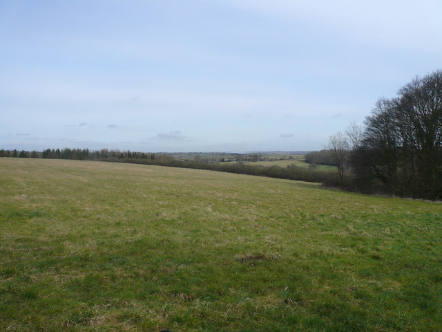 View from David's Hill