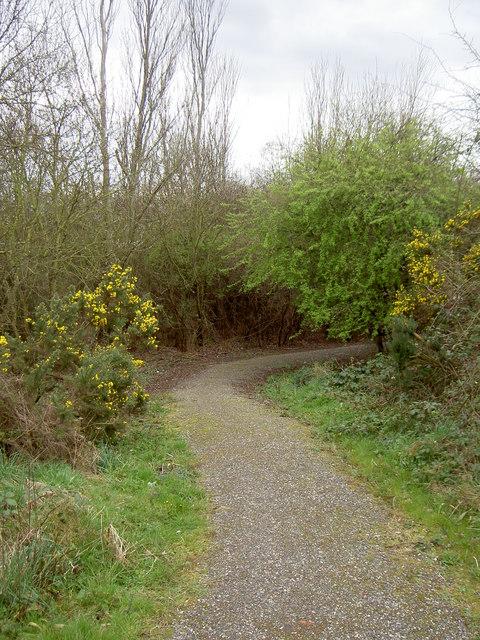 Bidston Moss Nature Reserve