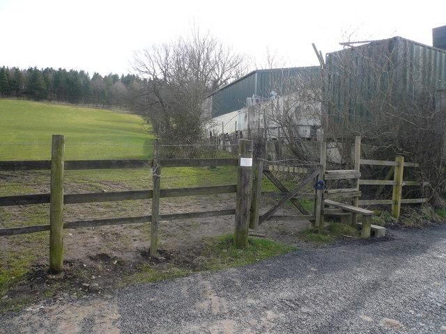 Footpath to Shaw Wood