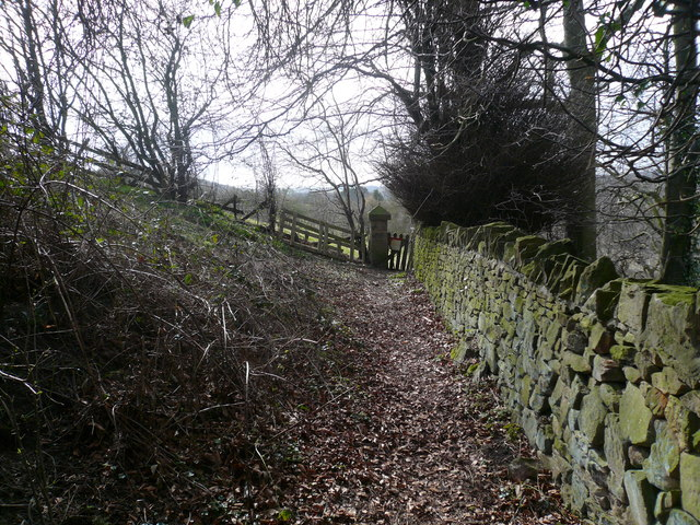 Footpath - View at the rear of Dale House