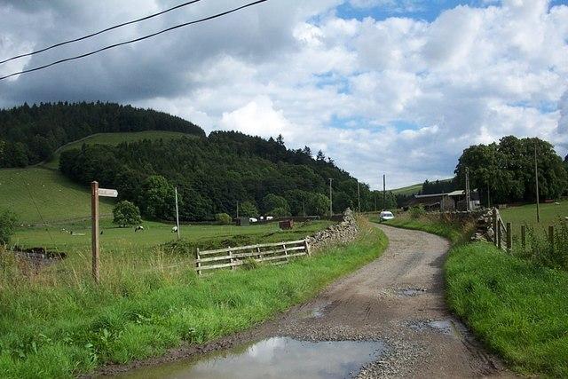 Farm road to Damhead