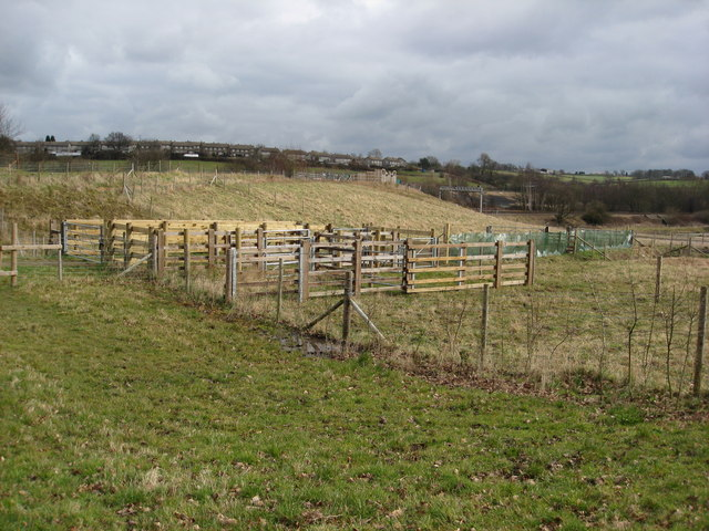 Avenue Washlands - Livestock Pens