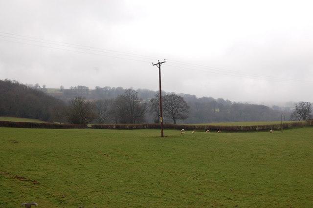 Pastureland on the lower slopes of Garn wen near Mamhilad