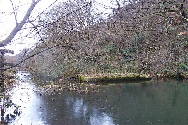 Tag Cut Canal Basin