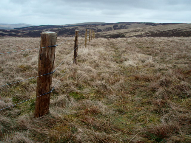 Fence, Calfhope Hill