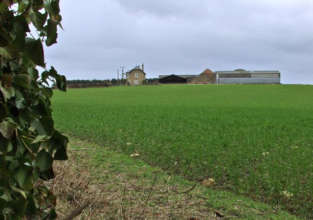 Towards Castle Farm