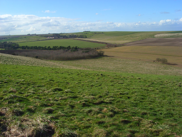 Bailey Hill