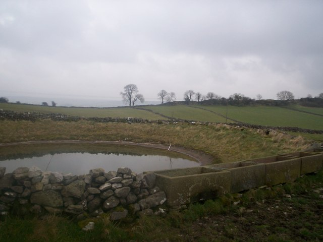 Walled mere and stone troughs