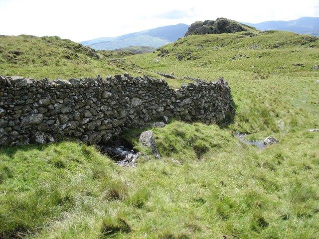 A sharp bend in the Rhobell Fawr traverse wall