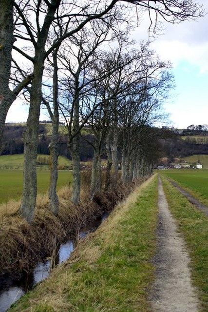 Track to Craigdallie