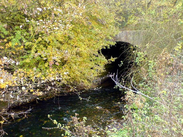 River Meden flowing into tunnel