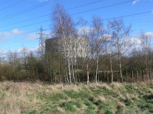 Gasometer through the trees