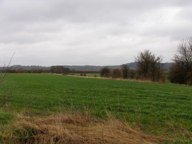 Across the fields to Millbrook