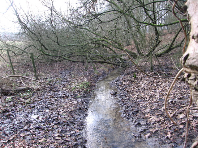 Brook near Cockleford