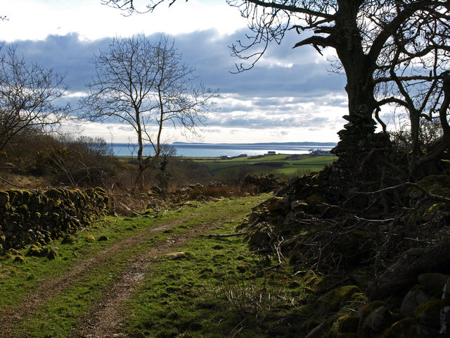 Path from Barhaskine to Gillespie