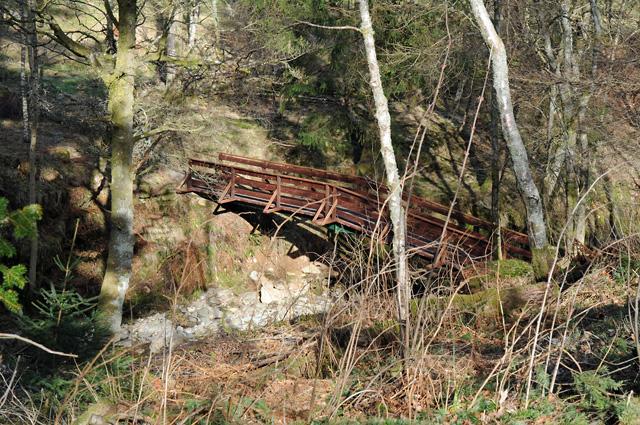 Footbridge over the Dunie Burn
